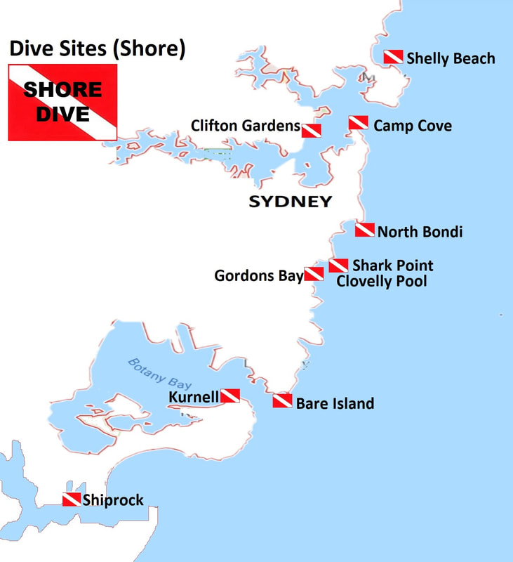 Sydney Dive Sites (Shore Dives)